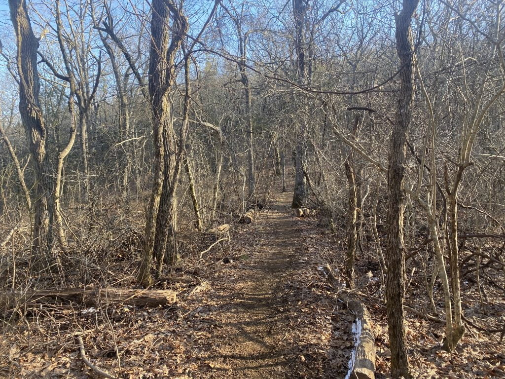 Day 10 of my Appalachian Trail thu hike. Hogpen Gap to Unicoi Gap