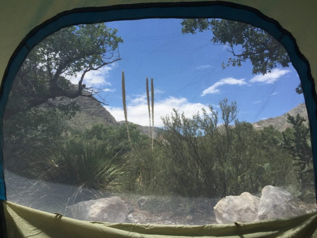 The view from our tent at guadalupe mountain national park in Texas