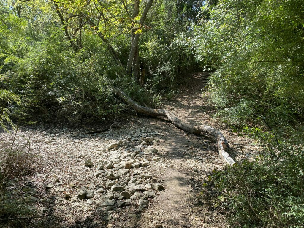 Fossil Ridge Trail at Cleburne State Park