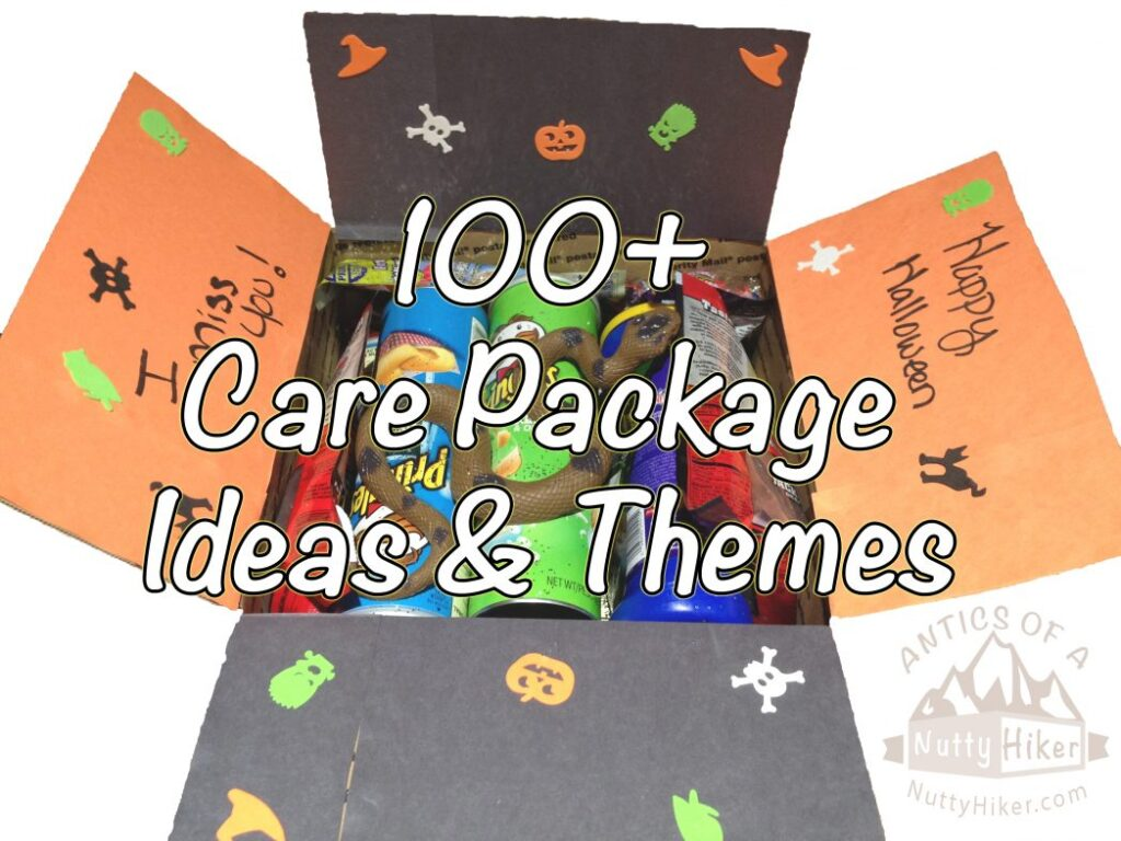 100+ Care Package Ideas and Themes to send to your loved one overseas