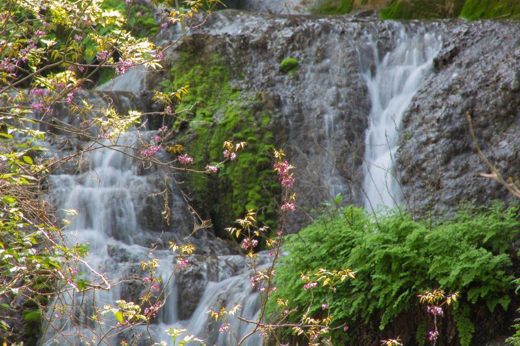 Colorado Bend State Park, Gorman Falls