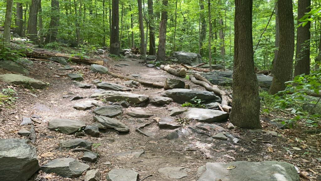 The first climb coming out of Harpers Ferry on the Appalachian Trail is full of rocks.